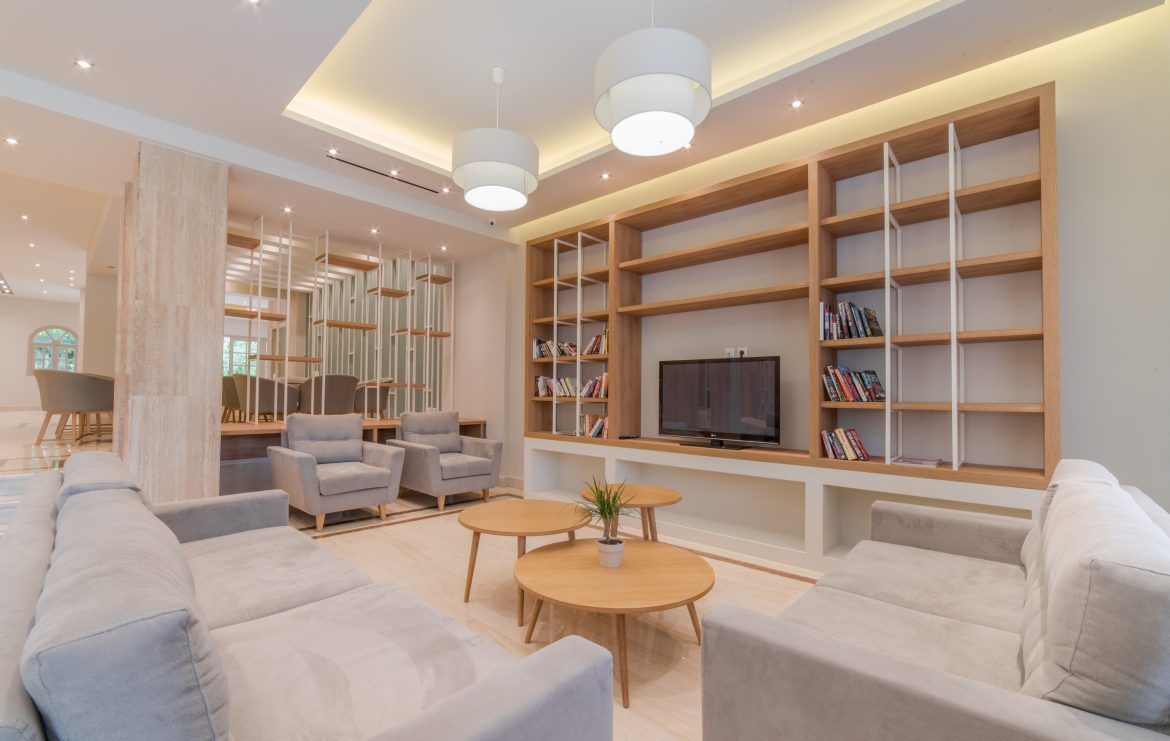 library-and-tv-area.jpg